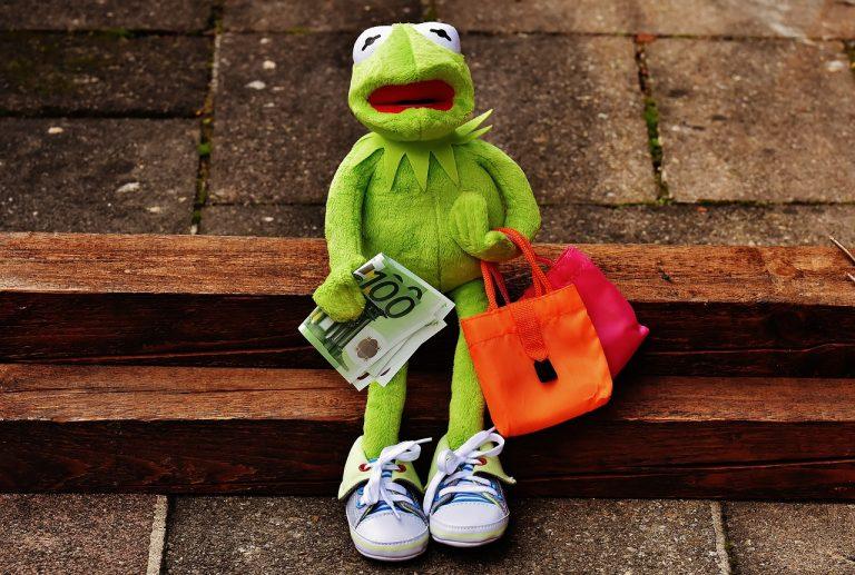 Finansijska organizacija novosadskih studenata roditelja iz ugla institucija
